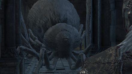 soñar con una araña