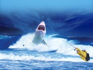Soñar con tiburones significado