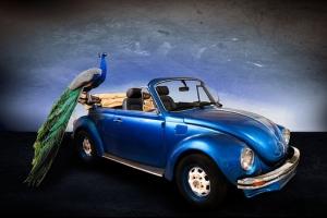 Soñar con coches significado